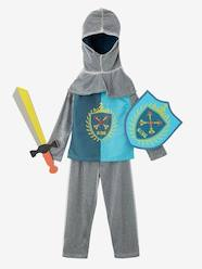 Toys-Knight Costume