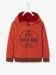 Boys-Sweatshirts & Hoodies-Hooded Jacket with Plush Lining for Boys