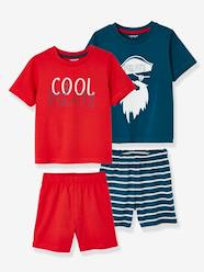 Boys-Nightwear-Pack of 2 Mix & Match Short Pyjamas for Boys
