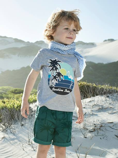 Printed T-Shirt for Boys GREY LIGHT MIXED COLOR+WHITE LIGHT SOLID WITH DESIGN